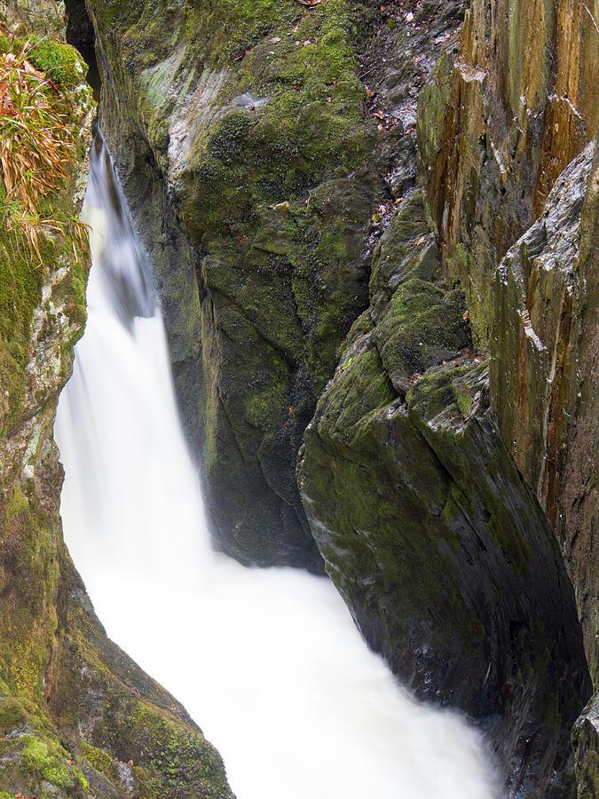 England, North Yorkshire, Yorkshire Photograph by Jason Friend Photography Ltd