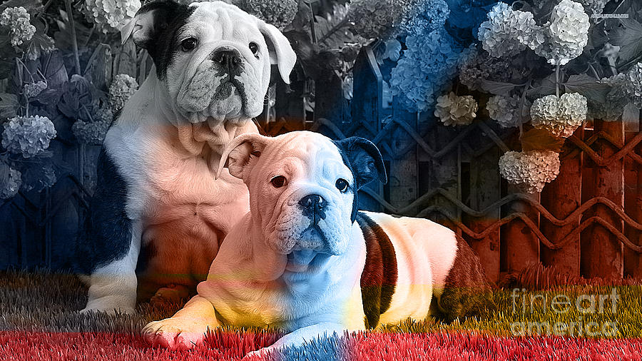 English Bulldog Puppy Painting Mixed Media by Marvin Blaine