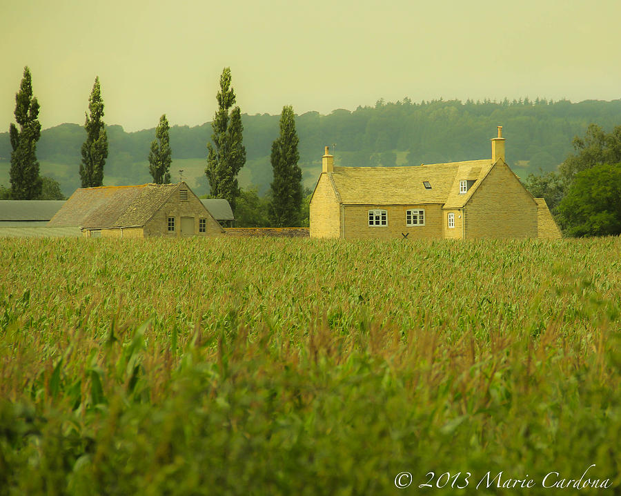 English Countryside Photograph by Marie  Cardona