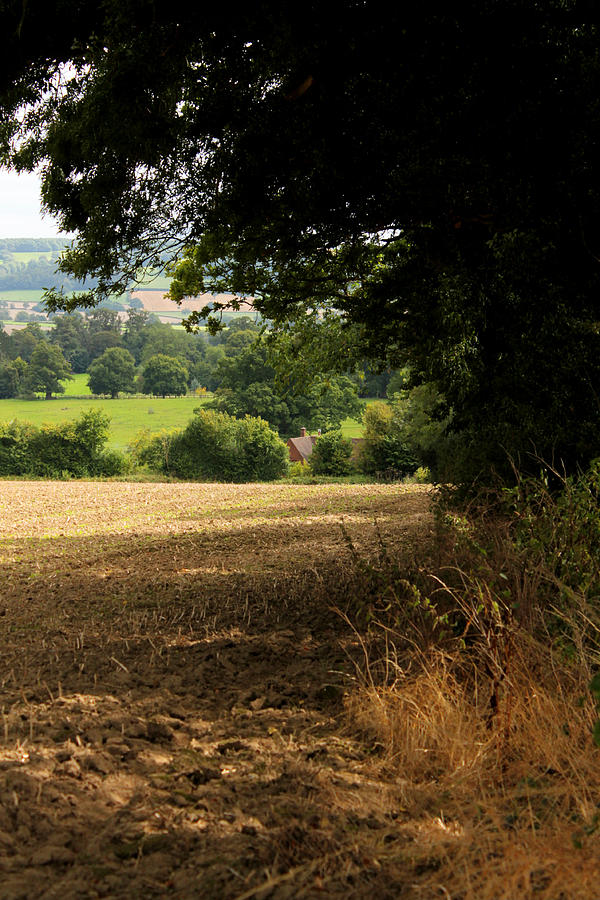 English Countryside by Sarah Broadmeadow-Thomas