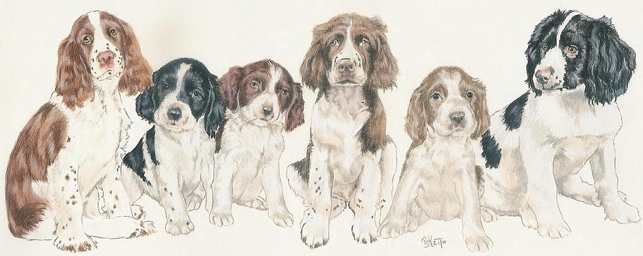 Sporting Group Mixed Media - English Springer Spaniel Puppies by Barbara Keith