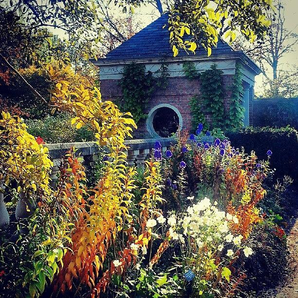 Garden Photograph - English Walled Garden by Jill Tuinier