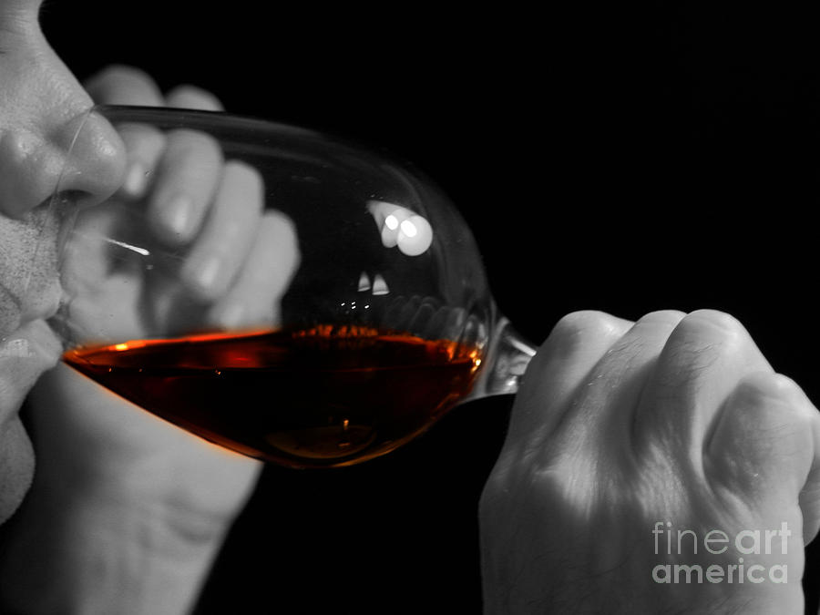 Beverage Photograph - Enjoying Wine by Patricia Hofmeester