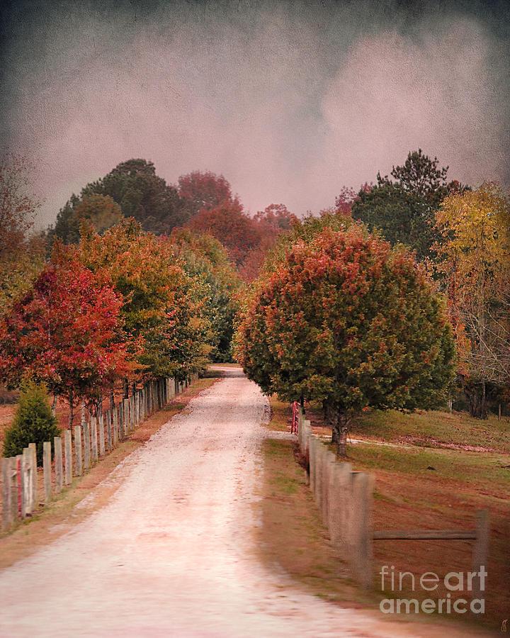 Autumn Photograph - Enter Fall by Jai Johnson
