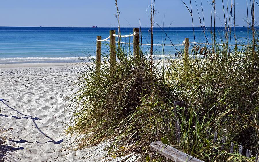 Coastline Photograph - Enter The Beach by Susan Leggett