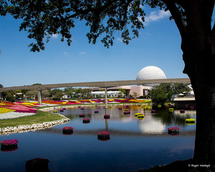 Flowers Photograph - Epcot At Disney World by Roger Wedegis