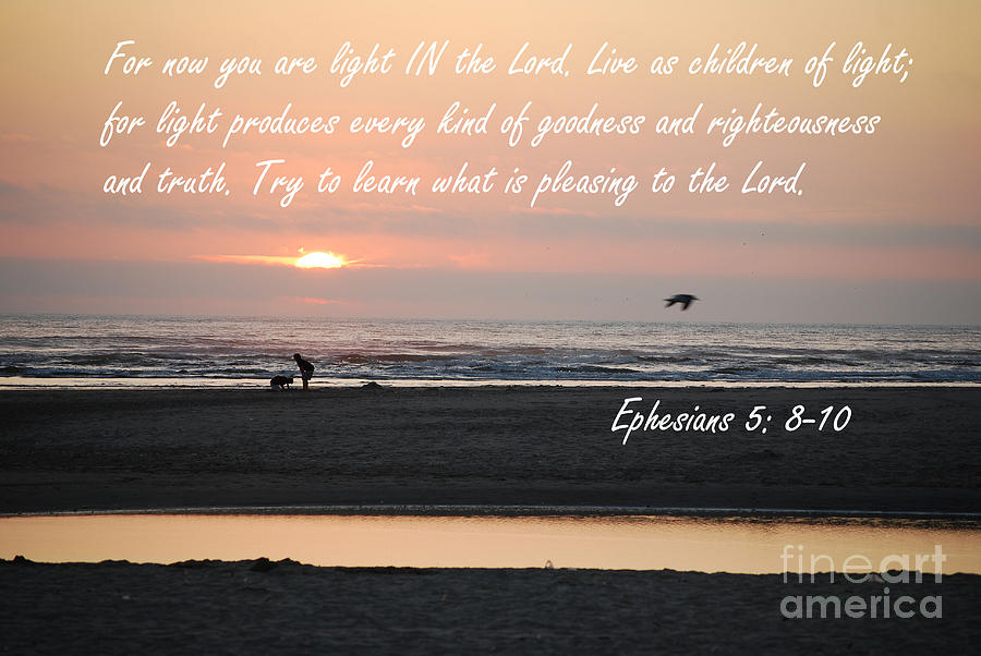 Ephesians 5 8-10 Photograph by Sharon Elliott