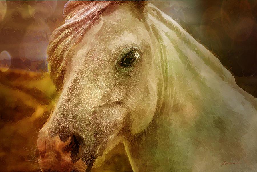 Horse Photograph - Equine Fantasy by EricaMaxine  Price