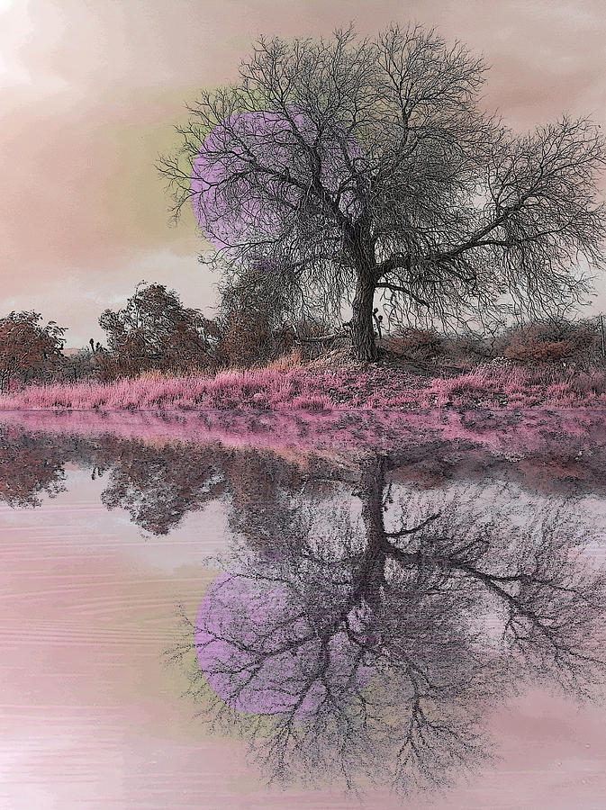Water Photograph - Espiritual Water Mirror by Jesus Nicolas Castanon