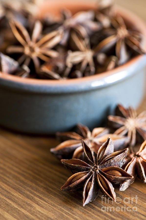Anise Photograph - Essence Of Aniseed by Anne Gilbert