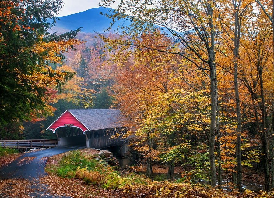 Covered Bridge Photograph - Essence Of New England - New Hampshire Autumn Classic by Thomas Schoeller