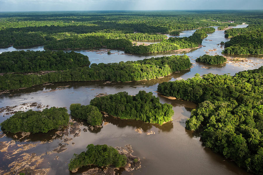 Braided River Photograph - Essequibo River, Guyana by Pete Oxford