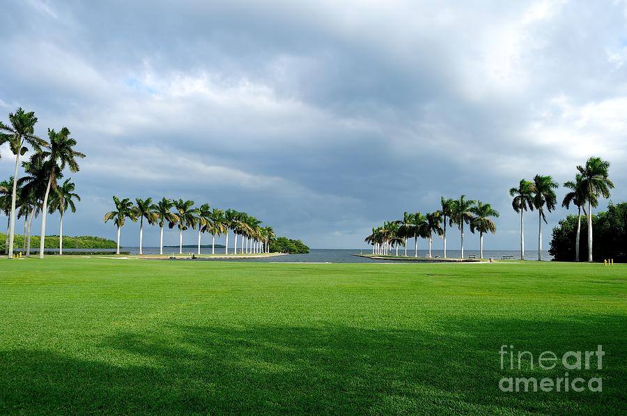 Estate Photograph - Estate Lawn by Andres LaBrada