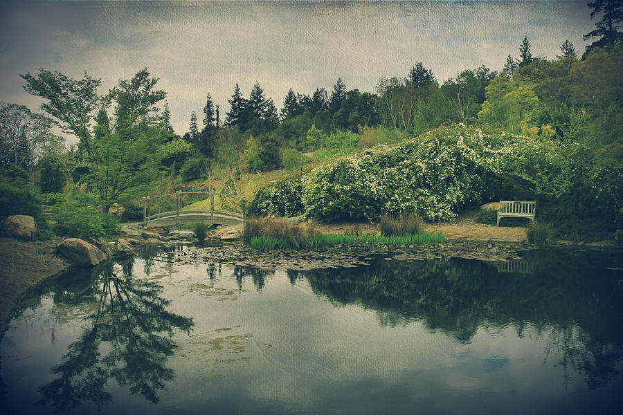 Glen Ellen Photograph - Even After Youre Gone by Laurie Search