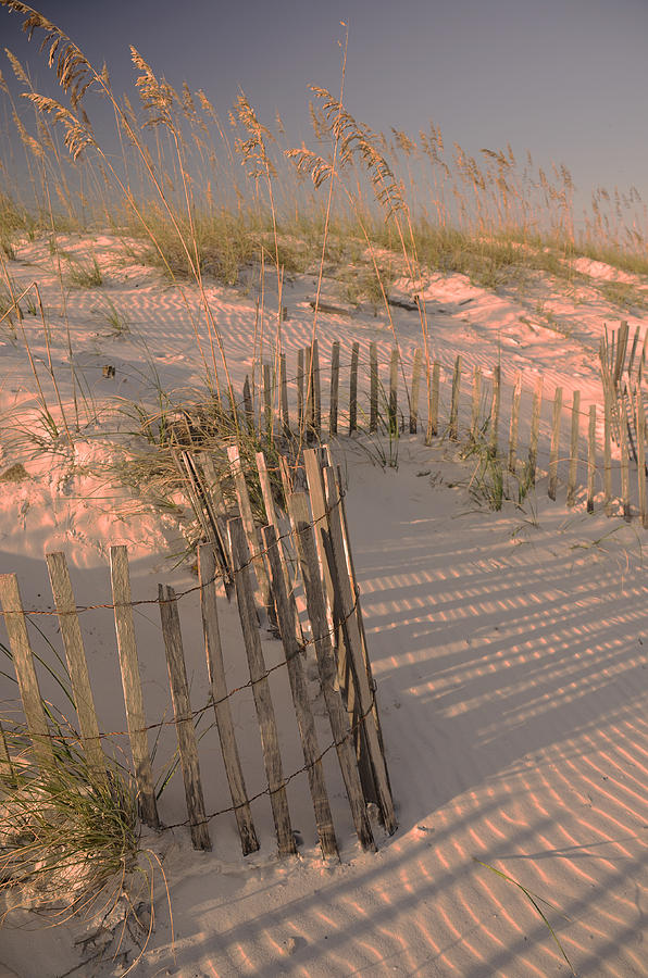 Orange Beach Photograph - Evening At The Beach by Maria Suhr
