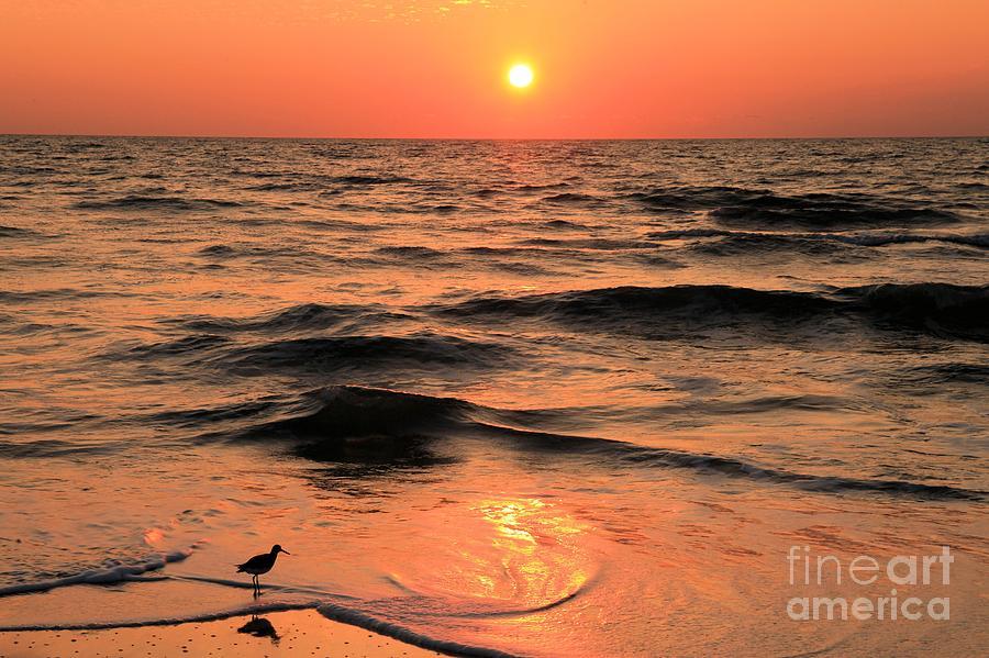 St Joseph Peninsula State Park Photograph - Evening Beach Stroll by Adam Jewell