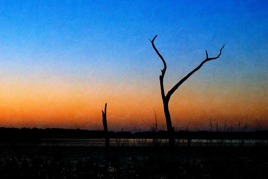 Evening Glow by Beverly Stapleton