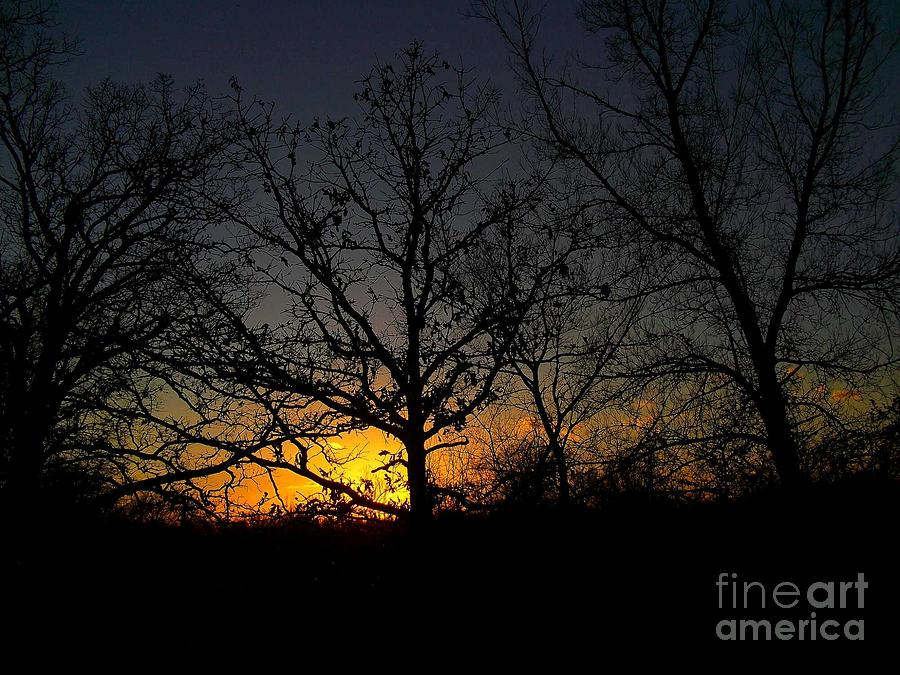 Trees Photograph - Evening In The Indian Nations by R McLellan
