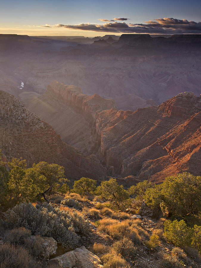 Canyon National Park Photograph - Evening Light At The Grand Canyon by Richard Berry