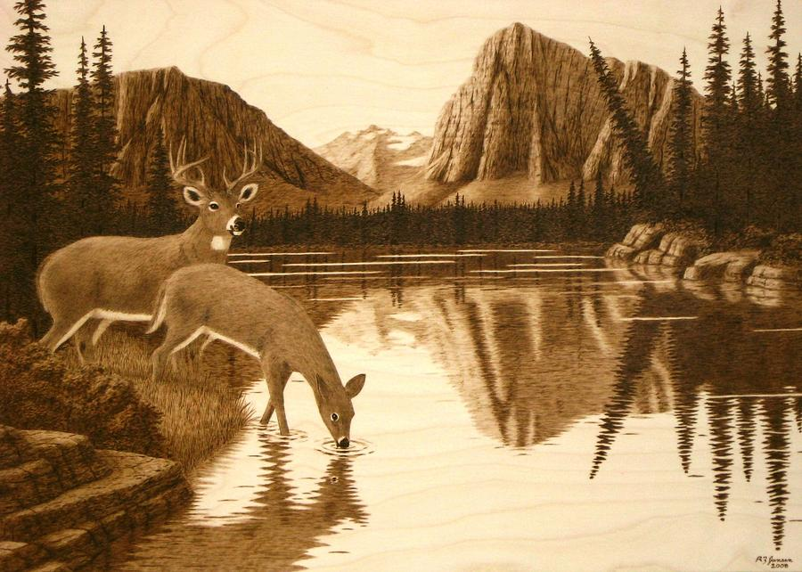 evening reflections pyrography by roger jansen. Black Bedroom Furniture Sets. Home Design Ideas