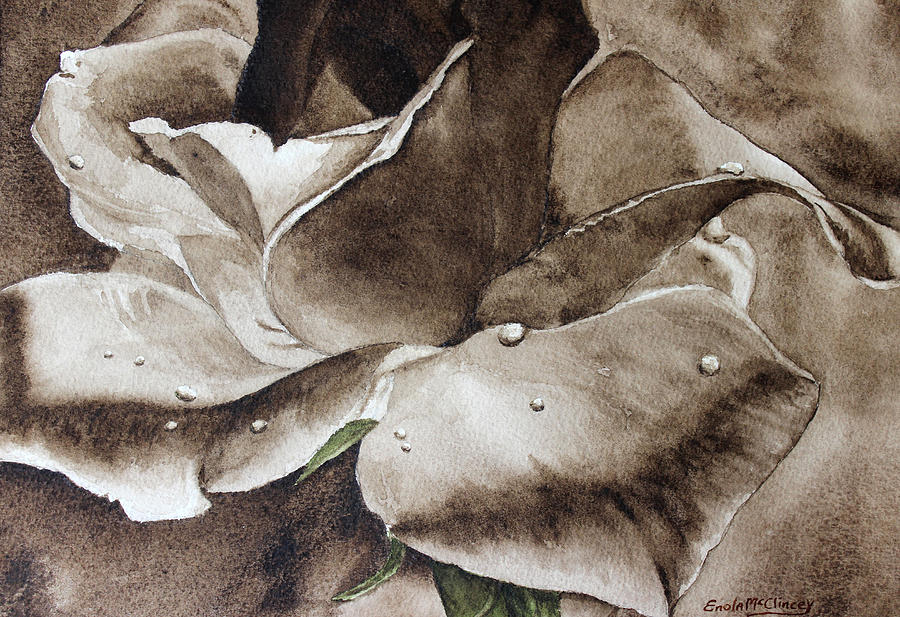 Watercolor Paintings Painting - Evening Rose  by Enola McClincey