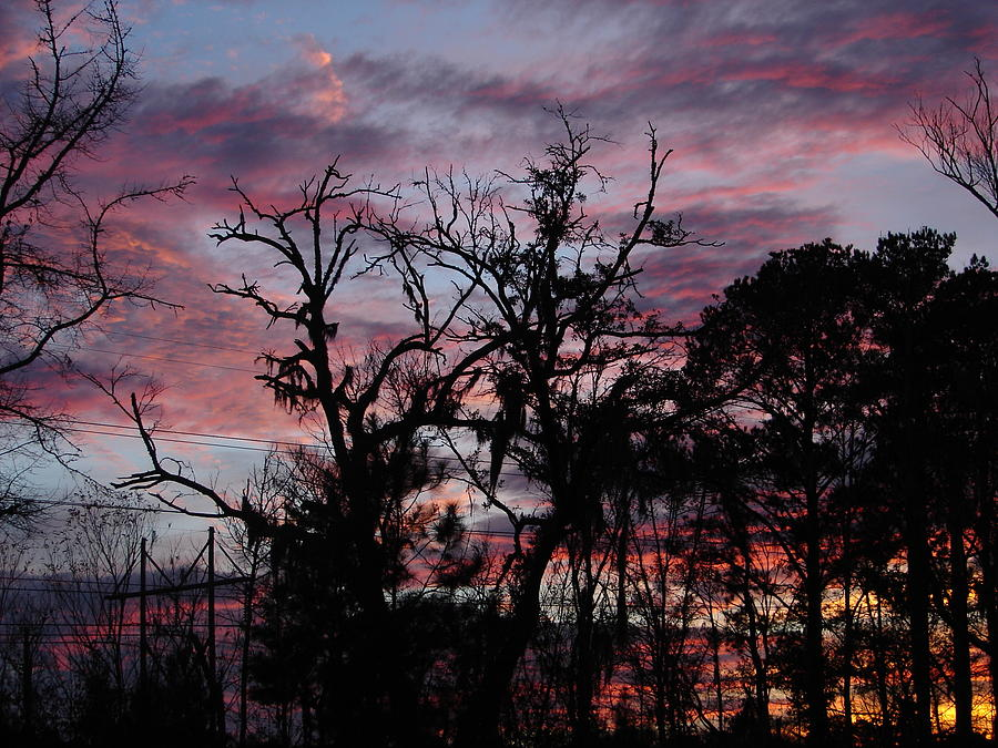Sunset Photography Photograph - Evening Sky Color by Ella Char
