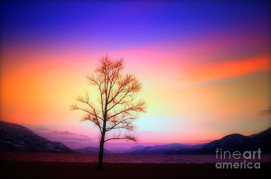 Lake Photograph - Evening Sky by Tara Turner