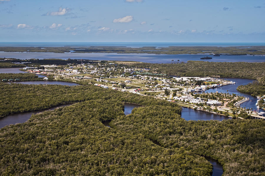everglades city chat The splendid natural world of the everglades national park and its 10,000 islands is now call (800) 814-cool to chat with an everglades tour specialist key west.