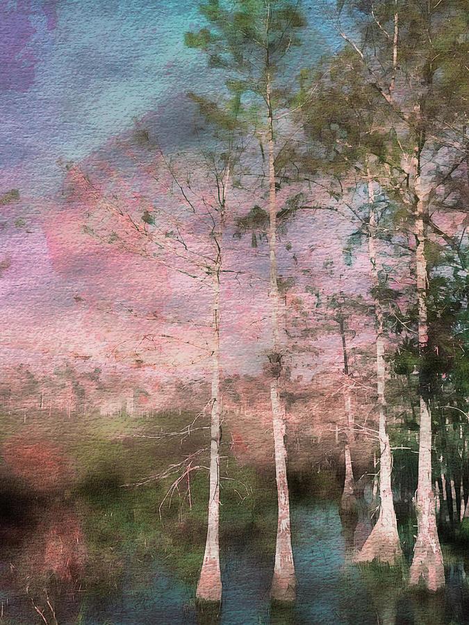 Everglades Photograph - Everglades by Eduardo Llerandi