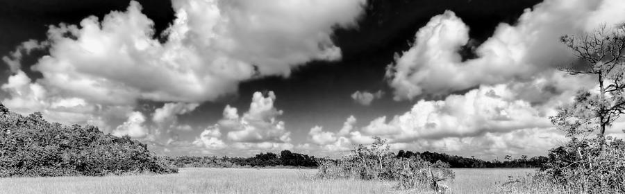 Beautiful Photograph - Everglades Panorama by Rudy Umans