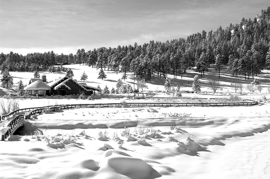 Lakehouse Photograph - Evergreen Lake House In Winter by Ron White