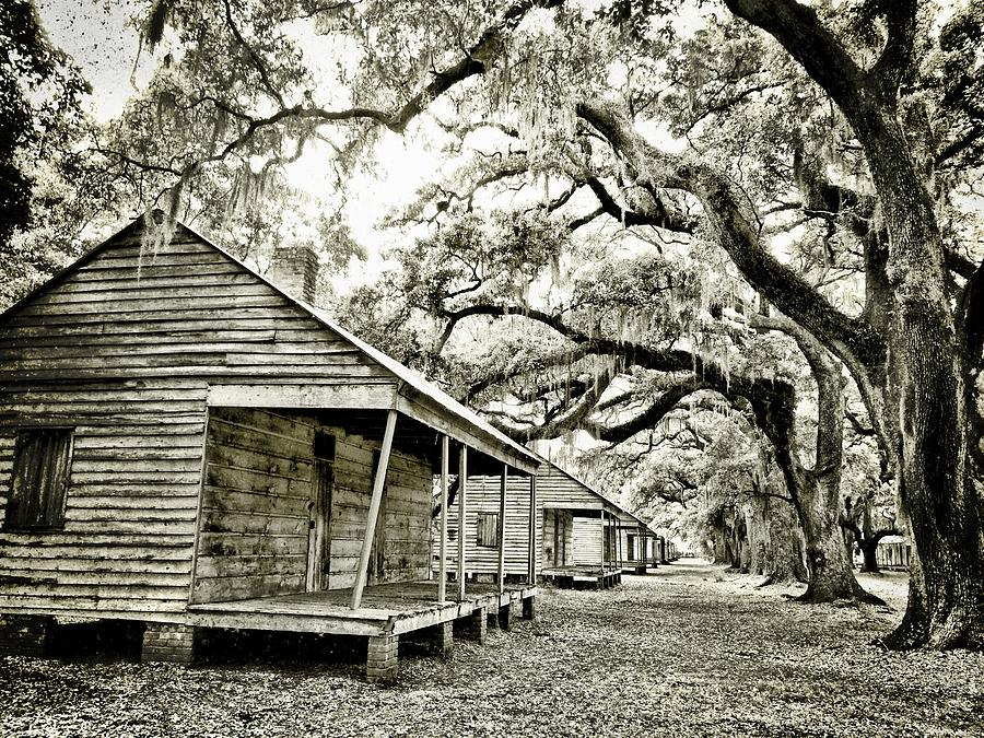 Evergreen Plantation Slave Cabins Photograph by Kristin Ray