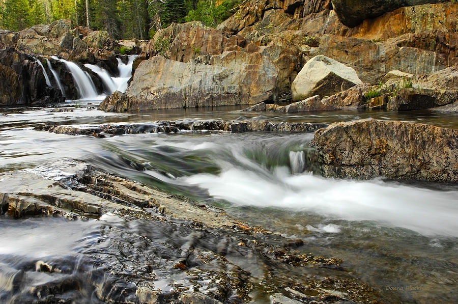 Nature Photograph - Everything Flows by Donna Blackhall