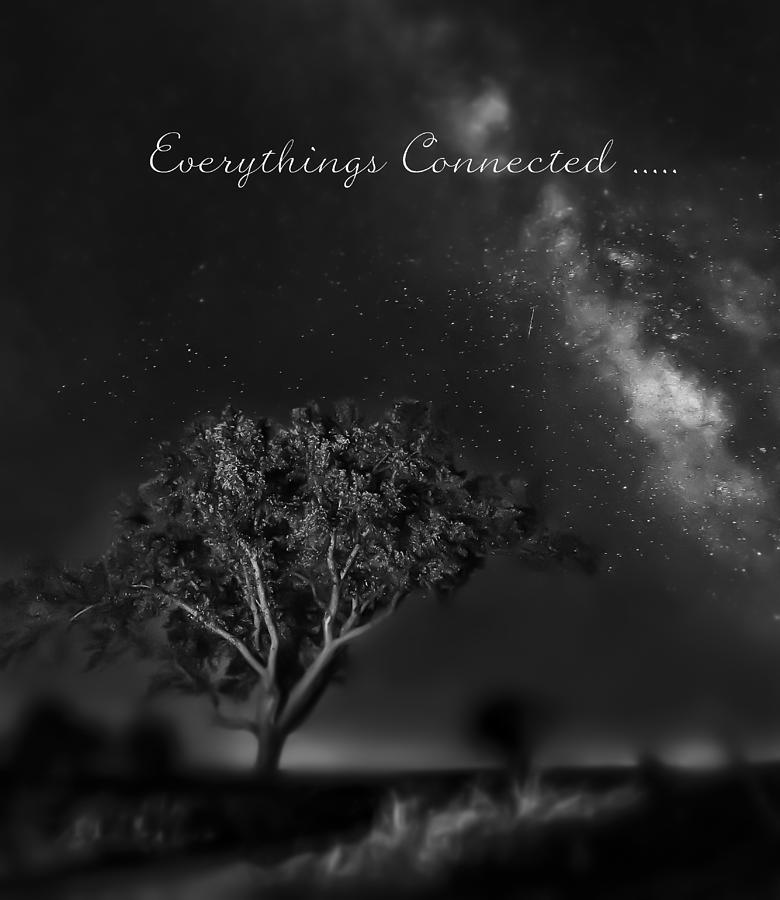 Inspirational Photograph - Everythings Connected by Garett Gabriel