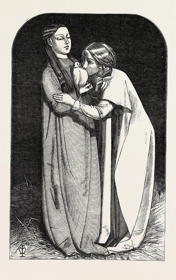 Exhibition Drawing - Exhibition Of The Royal Academy, The Return Of The Dove by Millais, John Everett (1829?1896), English