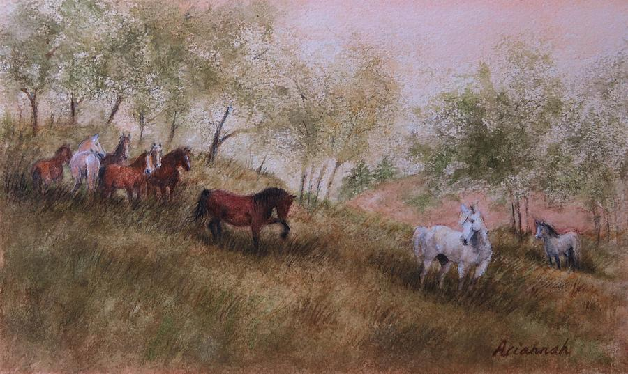 Horses Painting - Exiled From The Herd by Ursula Brozovich