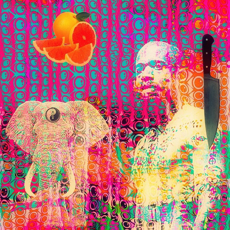 Collage Digital Art - Experimental Digital Collage by John  De Sousa