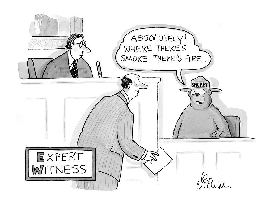 Smokey The Bear Drawing - expert Witness by Leo Cullum