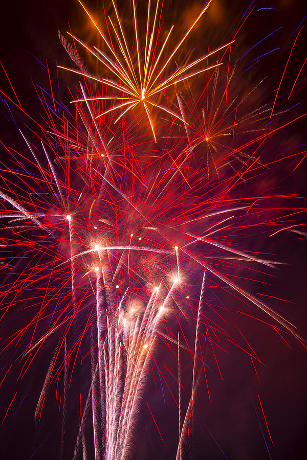 4th Of July Photograph - Exploding Fireworks by Garry Gay