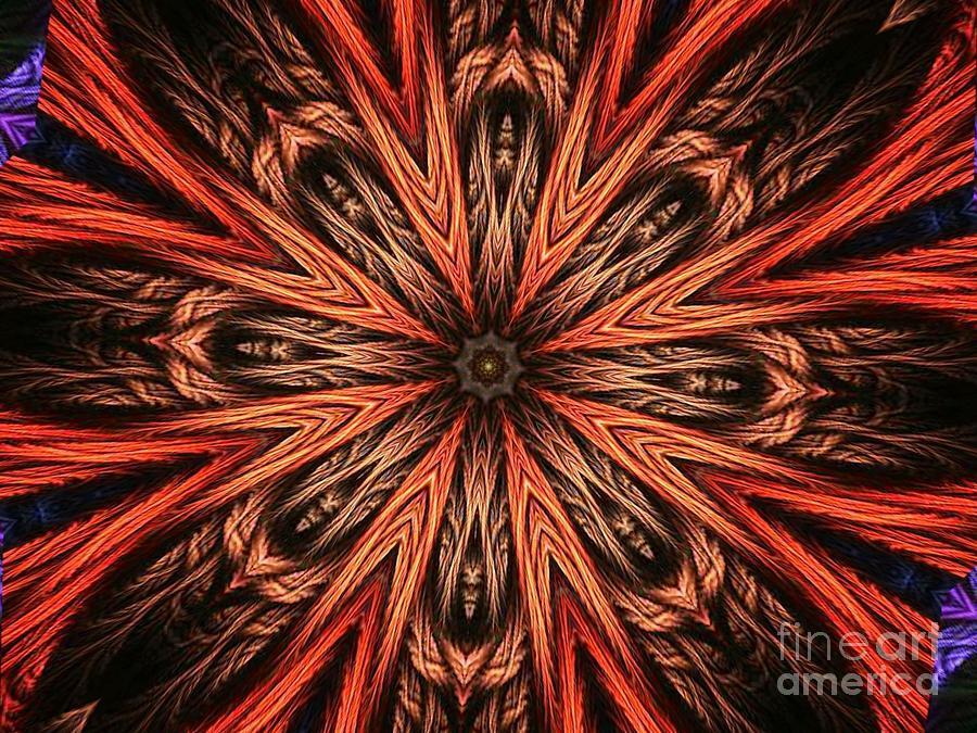 Faniart Digital Art - Explosion Of A Carrot  by Fania Simon