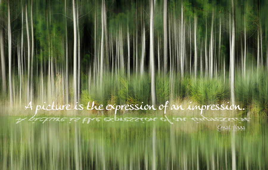 Expression Of An Impression Photograph