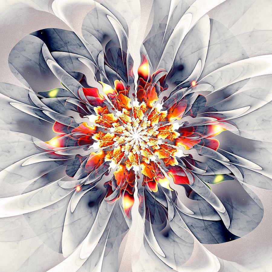 Plant Digital Art - Exquisite by Anastasiya Malakhova
