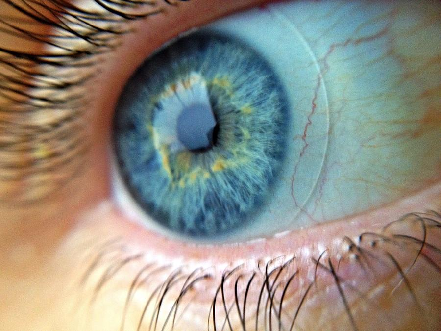 Extreme Close Up Of Human Eye Photograph by Miroslav Hlousek / Eyeem