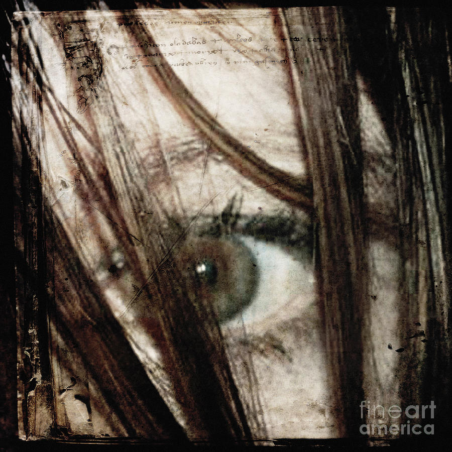 Eye Photograph - Eye-dentify by Sharon Kalstek-Coty