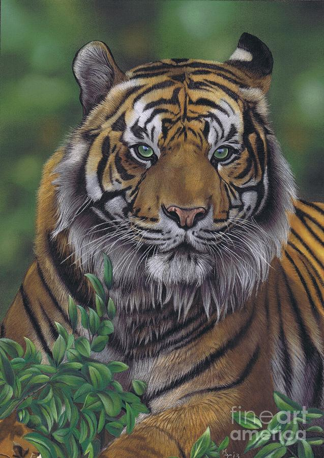 Eye Of The Tiger Pastel