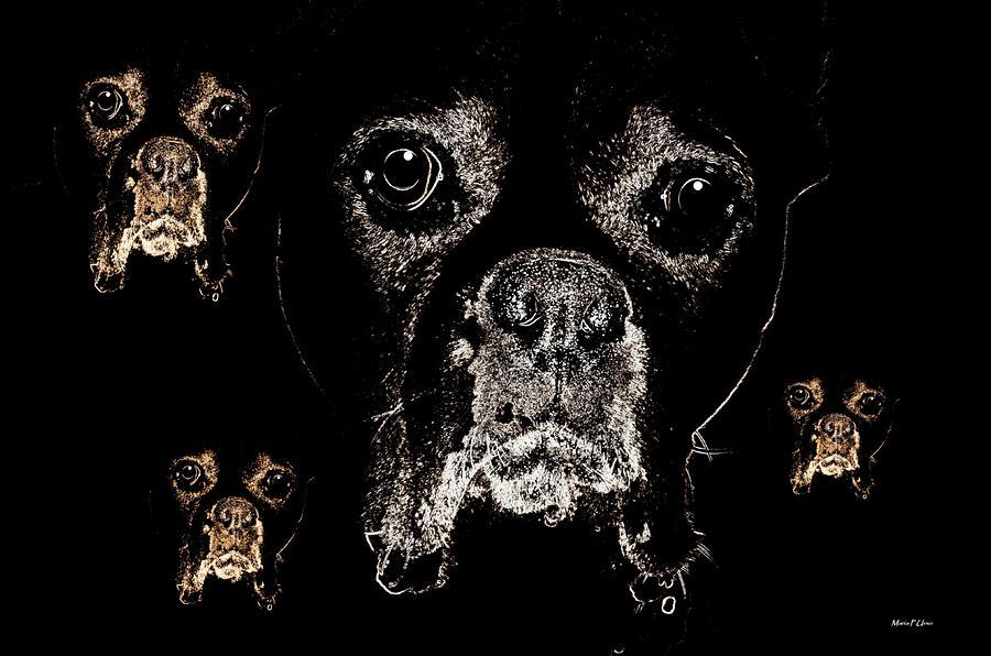 Eyes Digital Art - Eyes In The Dark by Maria Urso