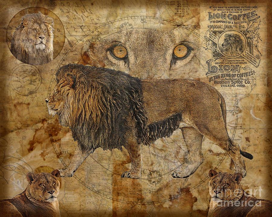 Lion Digital Art - Eyes Of Africa by Judy Wood