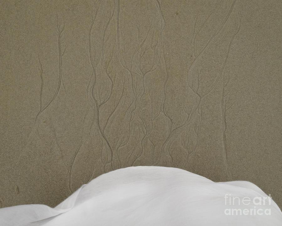 Tentacles Photograph - Fabric by Agata Wisniowska