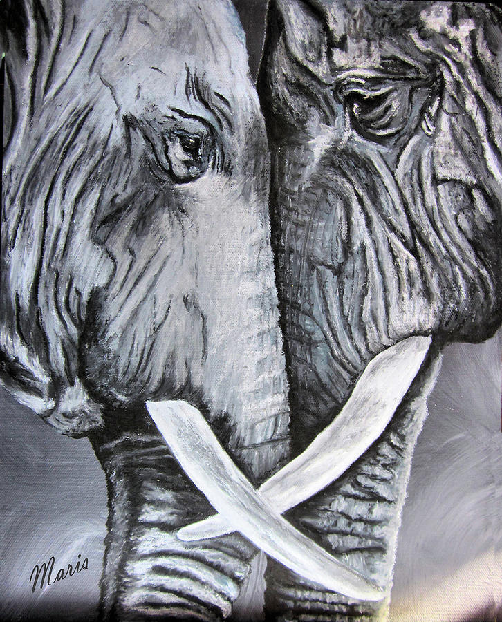Elephants Painting - Face To Face by Maris Sherwood