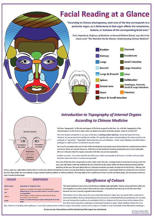 Facial Reading At A Glance